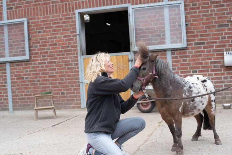 Beschwerden im Bewegungsapparat mit Osteopathie lindern: Osteopathie und Tierheilpraxis Ina Wattenberg
